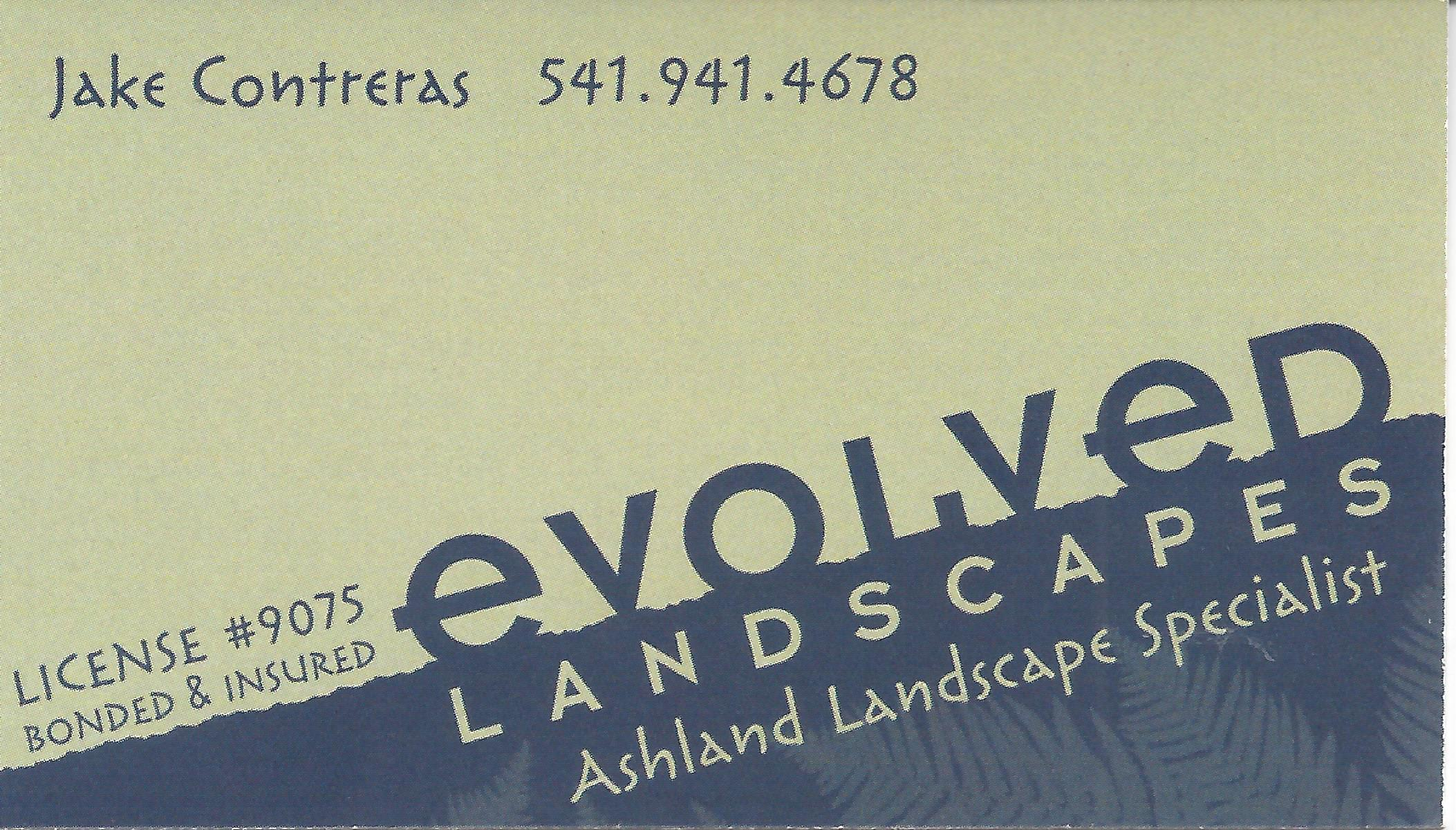 Evolved Landscapes